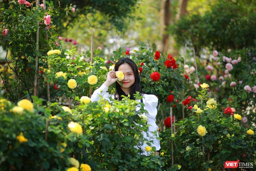 """Chàng trai tạo """"thiên đường hồng"""" Ban Mê Garden cho chị em selfie ảnh 13"""