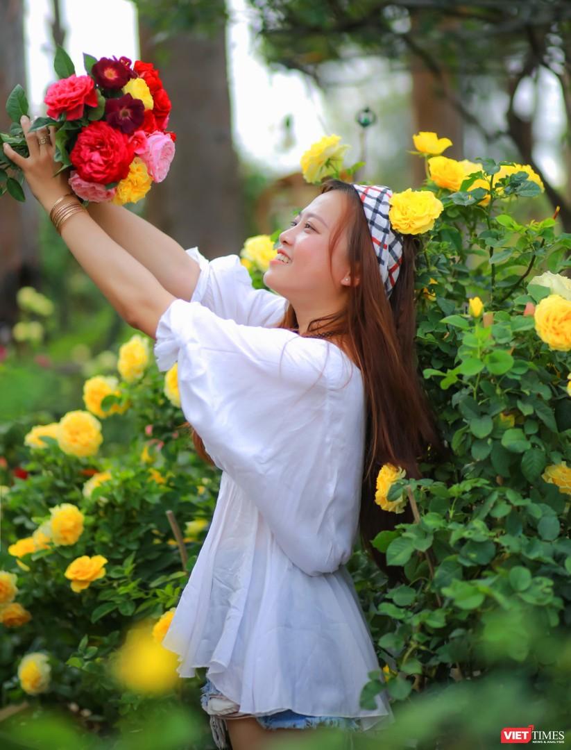 """Chàng trai tạo """"thiên đường hồng"""" Ban Mê Garden cho chị em selfie ảnh 1"""