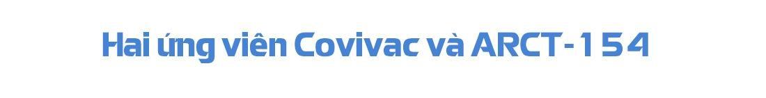 Chuyên gia miễn dịch Trần Văn Hiếu nói về Nanocovax, Covivac và ARCT-154 ảnh 9