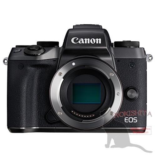 Canon EOS M5 chưa ra mắt đã gây xôn xao ảnh 1