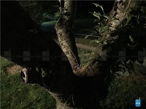 Đẹp hút mắt ảnh chụp thử từ iPhone 7 ảnh 13