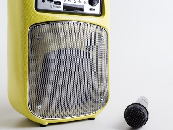 Cận cảnh loa di động đa năng Soundmax M-1 ảnh 3