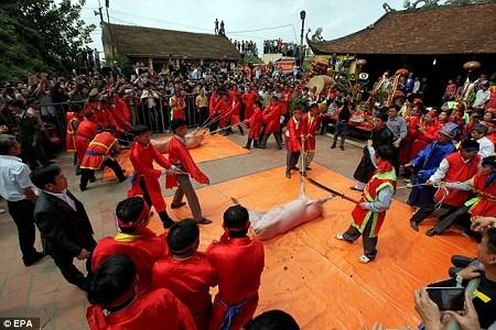 Báo quốc tế viết về lễ hội chém lợn của Việt Nam ảnh 6