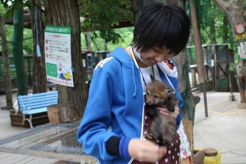 """Ngôi làng """"cáo"""" kỳ lạ ở Nhật Bản ảnh 4"""