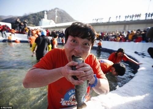 Những lễ hội lạ chỉ có ở Hàn Quốc ảnh 4
