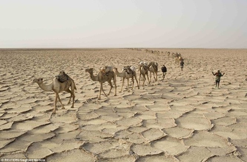 Người dân ở nơi nóng nhất thế giới sống ra sao? ảnh 3