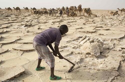 Người dân ở nơi nóng nhất thế giới sống ra sao? ảnh 5