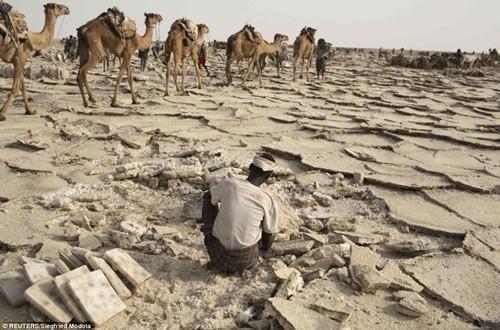 Người dân ở nơi nóng nhất thế giới sống ra sao? ảnh 6