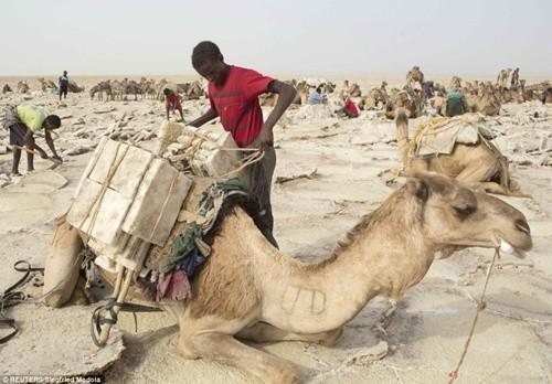 Người dân ở nơi nóng nhất thế giới sống ra sao? ảnh 8