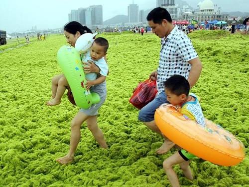 Các bãi biển như đến từ địa ngục ảnh 4