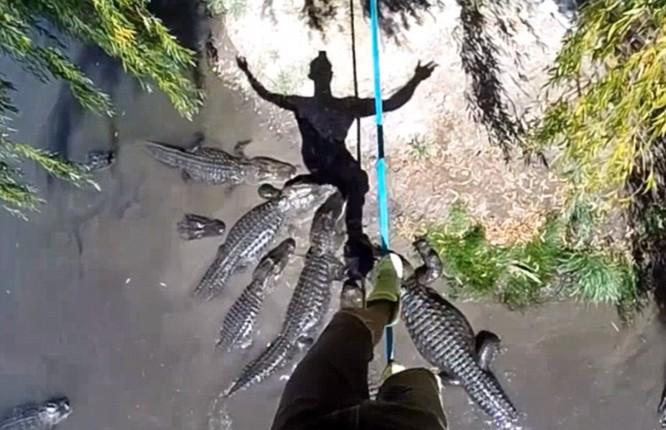 Đứng tim với màn biểu diễn trên dây thép vờn cá sấu ảnh 11