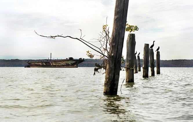Khám phá vùng đất với hơn 200 xác tàu chiến của Mỹ ảnh 9