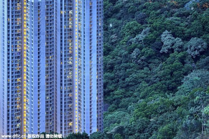 Khó tin trước mật độ công trình kiến trúc dày đặc ở Hồng Kông ảnh 6
