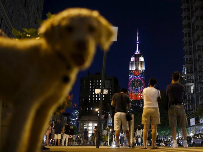 Reuters công bố 25 bức ảnh nóng nhất trên mạng xã hội năm 2015 ảnh 2