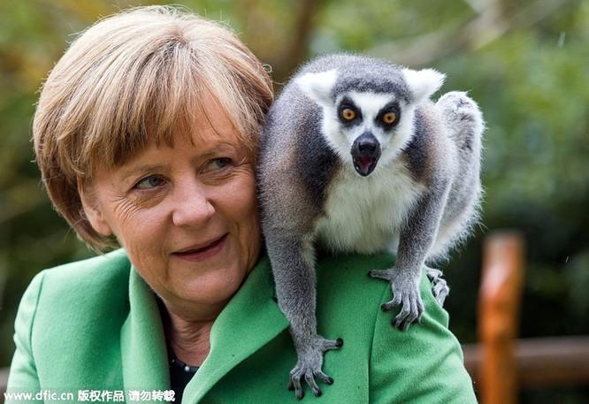 Obama làm đầu bếp, Kim Jong Un đáp chuyên cơ thị sát, bà Merkel chụp ảnh selfie ảnh 8