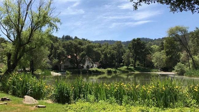 Chiêm ngưỡng bên trong biệt thự đắt nhất tại thung lũng Silicon ảnh 11