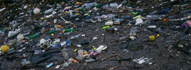Thế giới đang tìm cách không sử dụng nhựa ảnh 1