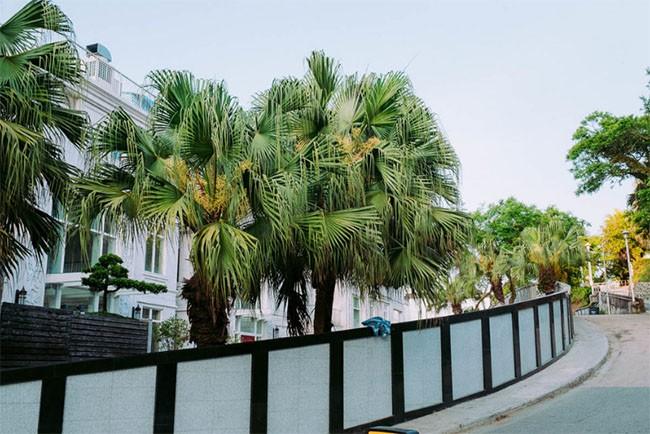 Khám phá khu phố đắt nhất thế giới - nơi tỷ phú Jack Ma sở hữu căn biệt thự trị giá 191 triệu USD ảnh 21
