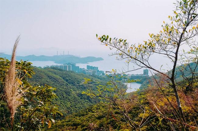 Khám phá khu phố đắt nhất thế giới - nơi tỷ phú Jack Ma sở hữu căn biệt thự trị giá 191 triệu USD ảnh 3