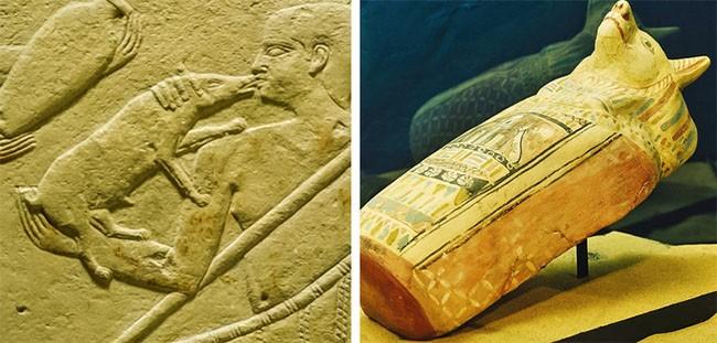 Ngỡ ngàng trước sự thật ít ai biết đến về cuộc sống của người Ai Cập cổ đại ảnh 4