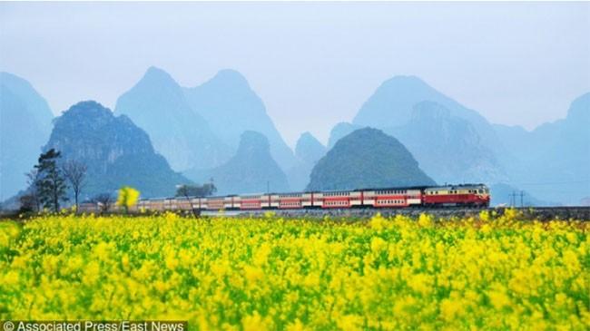"""11 điều """"kỳ lạ"""" về Trung Quốc không phải ai cũng biết ảnh 3"""