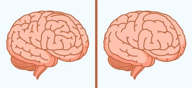 13 thói quen thường ngày vô cùng có hại cho bộ não ảnh 13