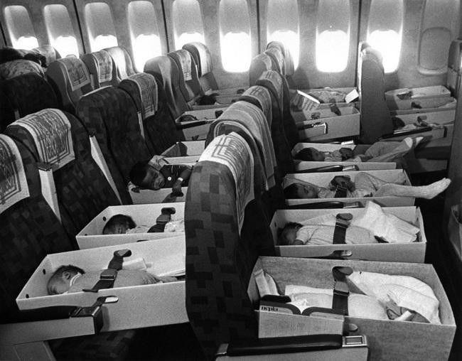 Babies on board!