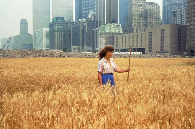 Manhattan Wheatfield