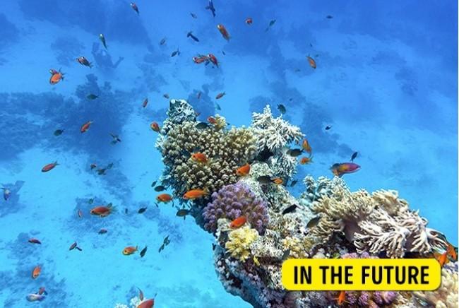 10 địa điểm nổi tiếng trên thế giới sẽ sớm biến mất trong tương lai ảnh 20