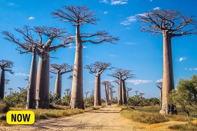 10 địa điểm nổi tiếng trên thế giới sẽ sớm biến mất trong tương lai ảnh 7