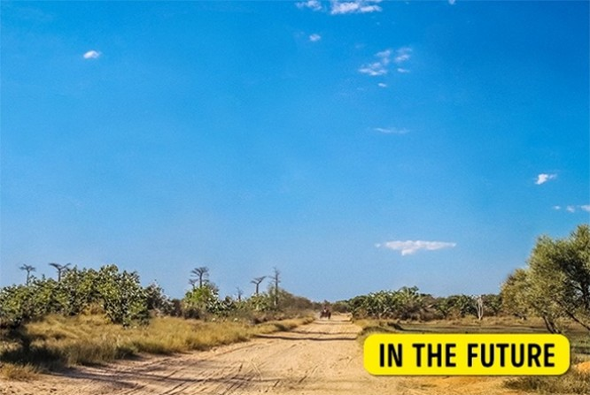 10 địa điểm nổi tiếng trên thế giới sẽ sớm biến mất trong tương lai ảnh 8
