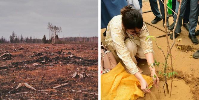 9 điều chúng ta có thể làm để giảm bớt biến đổi khí hậu ảnh 4