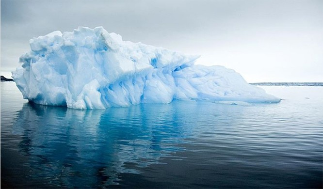 9 điều chúng ta có thể làm để giảm bớt biến đổi khí hậu ảnh 3