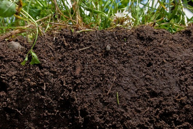 Soil-Top-10-Natural-Resources-That-Will-Deplete-Soon