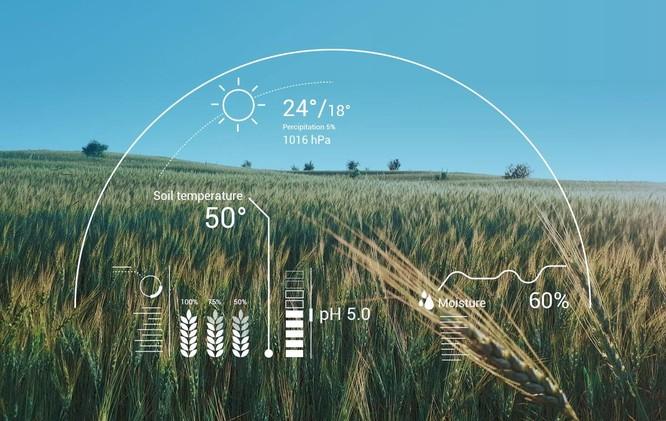 Ứng dụng trí tuệ nhận tạo trong nông nghiệp liệu có khả thi? ảnh 2