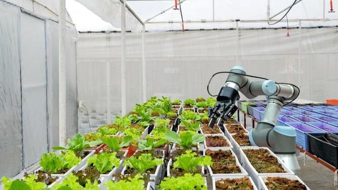 Robot có thể được lập trình để đo độ ẩm, nhiệt độ và mức hấp thụ dinh dưỡng của cây, từ đó lập trình ra phương án chăm bón tự động phù hợp nhất.