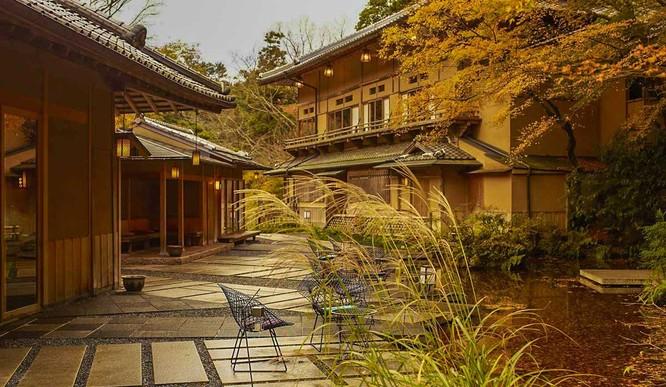Một phút lắng lòng trước vẻ đẹp của Kyoto, Nhật Bản ảnh 9