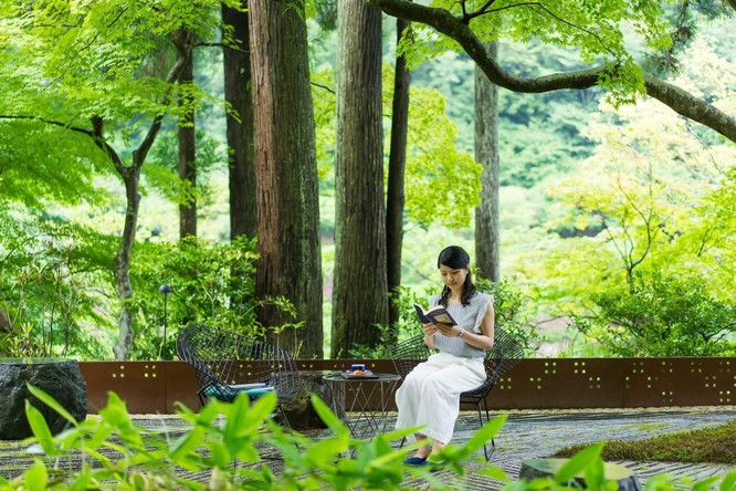 Một phút lắng lòng trước vẻ đẹp của Kyoto, Nhật Bản ảnh 11