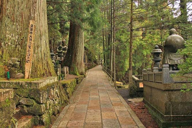 Một phút lắng lòng trước vẻ đẹp của Kyoto, Nhật Bản ảnh 3