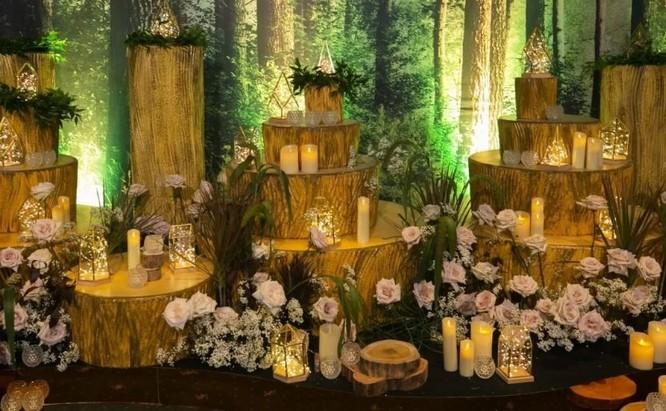 Toàn cảnh đám cưới triệu đô của Đàm Thu Trang và Cường Đô La ảnh 3