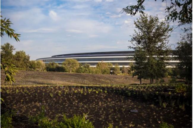 Choáng ngợp trước khuôn viên làm việc mới của Apple – Apple Park ảnh 9