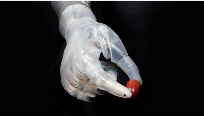 """Trong tương lai, con người sẽ trở thành sinh vật """"nửa người nửa máy""""? ảnh 2"""