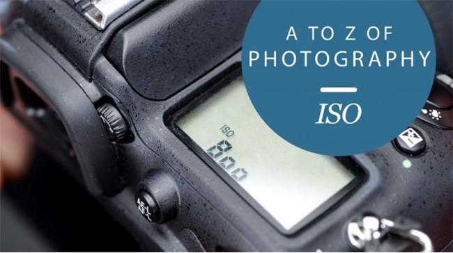 Tìm hiểu về độ nhạy sáng ISO trong nhiếp ảnh ảnh 1