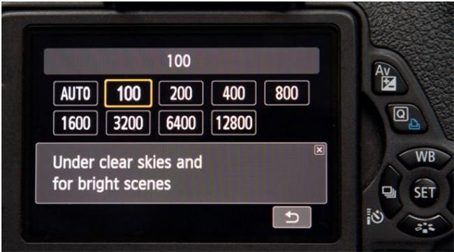 Tìm hiểu về độ nhạy sáng ISO trong nhiếp ảnh ảnh 3