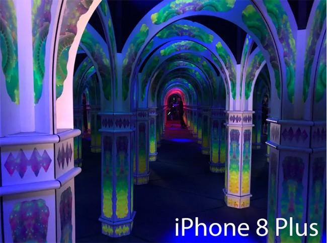 So tài iPhone 8 Plus và Google Pixel 2: Máy ảnh nào đẳng cấp hơn? ảnh 13