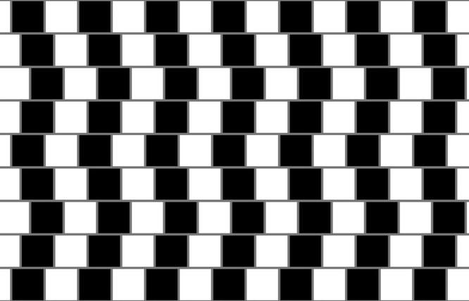 Hại não: Những ảo ảnh đánh lừa thị giác (Phần 1) ảnh 14