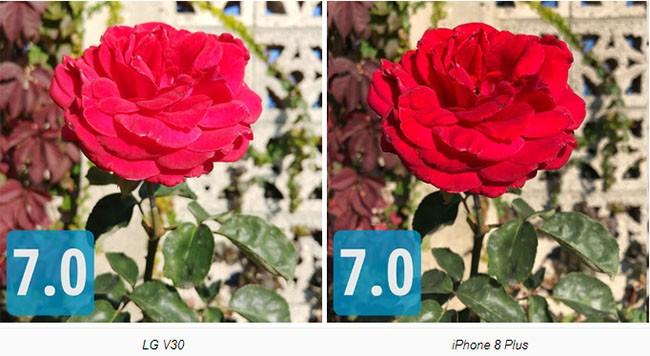 """So sánh camera """"thần thánh"""" của Galaxy Note 8, LG V30, HTC U11 và iPhone 8 Plus ảnh 3"""