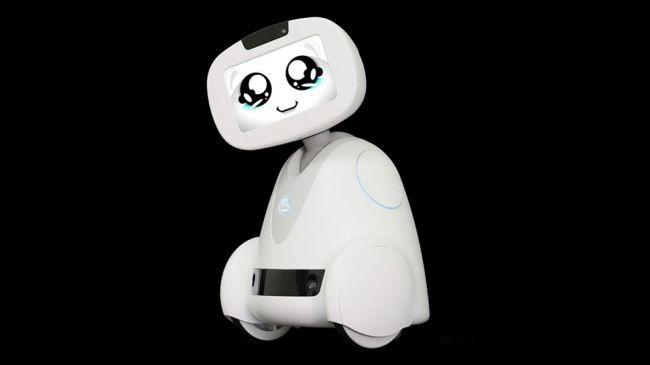 Cùng khám phá những robot xuất sắc nhất tại CES 2018 ảnh 5
