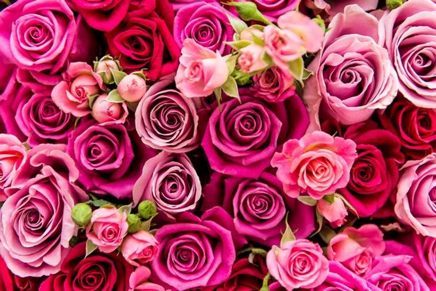 Bạn đã biết nguồn gốc, ý nghĩa của ngày Valentine 14/2? ảnh 3