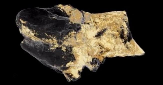 Top 8 khám phá khảo cổ khiến cả thế giới sửng sốt ảnh 1